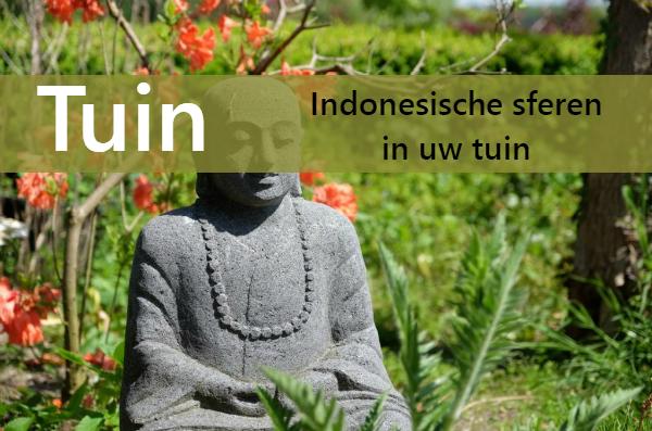 IG_TUIN